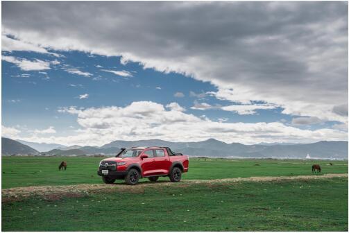一起开炮,体验草原一年中最美的风景